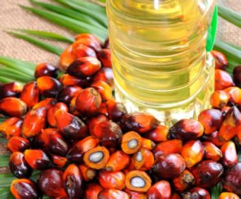 parm oil