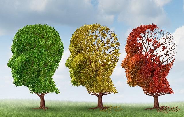deterioro-cognitivo-leve-y-demencia.jpg